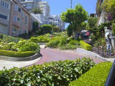 Houses all along are pretty and personal homes. Lombard St, San Francisco, crooked street.--Which Way USA