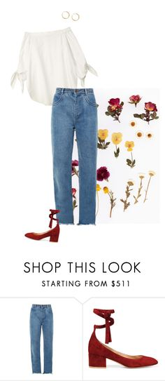 """""""No.2"""" by taylorcat ❤ liked on Polyvore featuring Chloé, Gianvito Rossi and GUESS"""