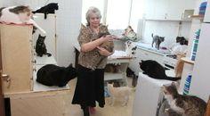 Раиса Жукова отглежда 55 котки