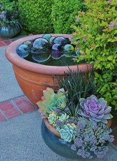 Terracotta water feature with glass orbs, Echeveria mixed planter by KarlGercens .Echeverias are arguably the most attractive of all succulents, highly valued for their amazing colours and variation, with the stunning leaf colour of many varieties . Diy Garden, Dream Garden, Garden Projects, Garden Art, Garden Design, Garden Pond, Container Water Gardens, Water Containers, Container Plants