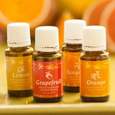 Young Living Essential Oils: Citrus Oils Study & their Calming Effects Education