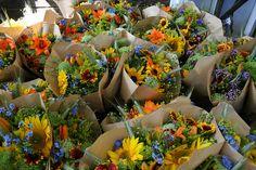 bright organic summer bouquets with cynoglossum Blue Showers. by Erin Benzakein / Floret Flower Farm, via Flickr