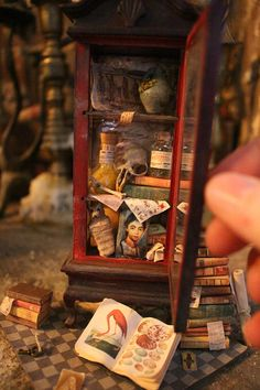Dollhouse Miniature DIY Kit & Tutorial --- Cabinet of Curiosity Miniature Crafts, Miniature Houses, Miniature Kitchen, Miniature Dolls, Cabinet Of Curiosities, Mini Things, Book Nooks, Miniture Things, Diy Kits