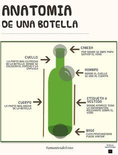 Anatomía de una botella: ¿conoces cada una de sus partes? #infografia #vino