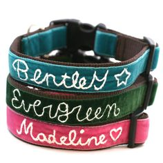 Personalized Velvet Dog Collar 14 colors to by shopmimigreen