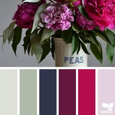 today's inspiration image for { color flora } is by @grainandfeather ... thank you, Rowena, for another wonderful #SeedsColor image share!
