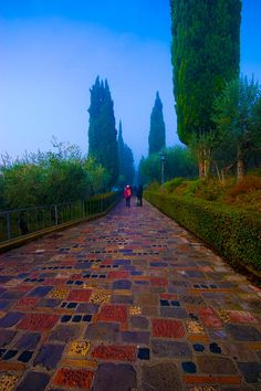 Pathway to San Damiano - Assisi ! Province of Perugia , #Umbria region Italy