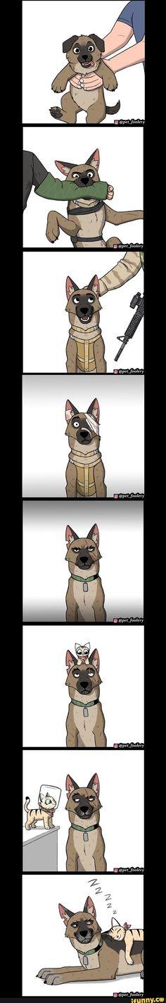 Funny Animal Comics, Funny Animal Jokes, Cute Comics, Cute Funny Animals, Funny Animal Pictures, Animal Memes, Funny Comics, Funny Cute, Funny Dogs