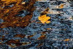 Amazing Autumn (39 pics) - Izismile.com