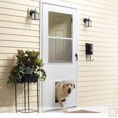 Exterior Door With Built In Pet Door Xpd50 Series