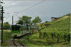 ASD trem local perto Verchiez.  2013/08/27 Suisse