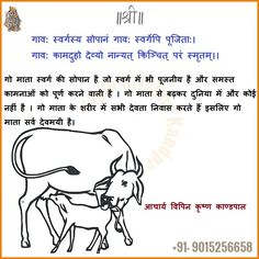 Save Cow- गऊ माता की रक्षा करो...गो-माता की जय...