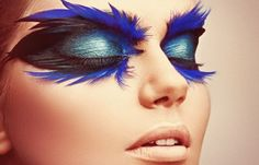 blue feathers eyes