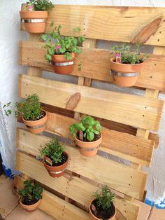 Herb garden on a pallet :)