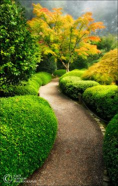 Let's take a walk down the path of this secret garden. What a relaxing way to spend the day. (Portland Japanese Garden, Oregon).