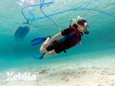 Snuba® Caleta | Snorkeling in Cancun