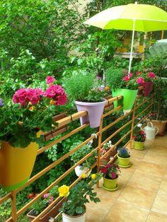 Így varázsolj édenkertet az erkélyből   Balkonada Organic Gardening, Bali, Seeds, Plants, Things To Sell, Collections, Planters, Organic Farming, Plant