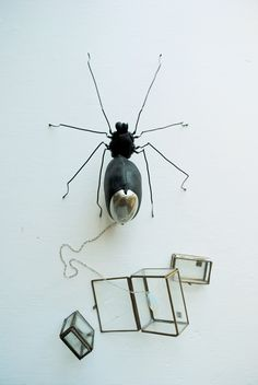 'Leather Spider With Leash' aka Halloween spider (2012) by English textile artist Mister Finch, via the artist's blog