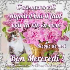 C'est mercredi, aujourd'hui il faut voir la vie en rose. Bisous de moi. Bon Mercredi ! #mercredi fleurs bouquet vie en rose chat