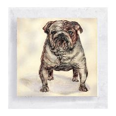 Dog Art - Animal Art - Penny the Bulldog Portrait - Canvas Print on 5x5 Art  Block - Animal Portrait - Kid's Wall Art -  Nursery Wall Decor