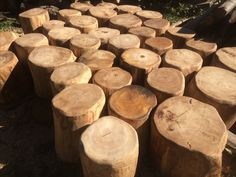 Log seats ready to go to a primary school in Hampshire. Copper Beech, Natural Play, Forest School, Primary School, School Projects, Hampshire, Texture, Wood, Garden