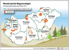 Environmental Studies, Hungary, Elementary Schools, National Parks, Study, Teacher, Science, Learning, Travel