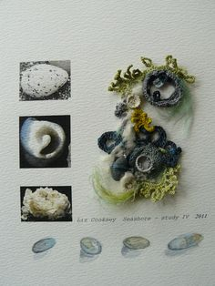 Seashore study  Love this!  I miss drawing with my crochet needle!