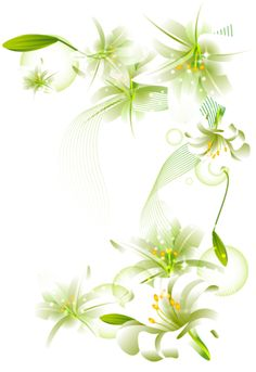 white flower png | White Flowers Element Free Transparent Clipart
