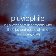 pluviophile - A lover of the rain; Someone who finds joy and peace of mind during rainy days. :)