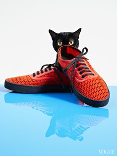 The Cat and the Flat: Spring Shoes and Kittens Make the Perfect Pair