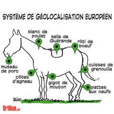 Viande de cheval : résultats de l'enquête jeudi -Urtikan.net. Where your supermarket meat comes from.