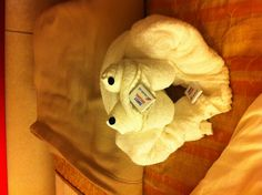 Towel animal can you guess what it is? Towel Animals, Dinosaur Stuffed Animal, Toys, Desserts, Activity Toys, Tailgate Desserts, Deserts, Clearance Toys, Postres