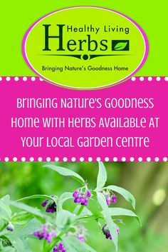 Bringing Nature's Goodness Home With Herbs Available At Your Local Garden Centre.
