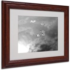 Trademark Fine Art Lily Pads & Sky Matted Framed Art by Patty Tuggle, Wood Frame, Size: 11 x 14, Brown