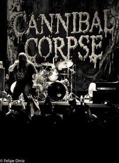 Cannibal Corpse, Wild Animal Park, Metal Albums, A Beast, Band Memes, Till Death, Metal Pins, Death Metal, Thunder
