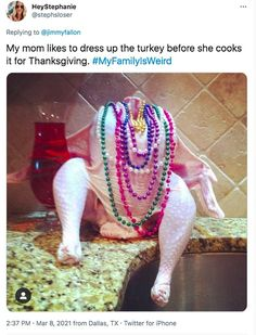 A snazzy lookin' bird! One family approaches 'dressing' for the Thanksgiving turkey in an ... Can't Stop Laughing, Laughing So Hard, New Funny Memes, Jimmy Fallon, Awkward Moments, Thinking Of You, Weird, Hilarious, Humor