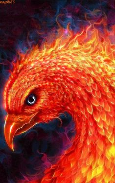 FIRE_FLAMES GIFRainbowsMore Pins Like This At FOSTERGINGER @ Pinterest