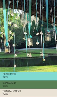 Week-6, Wedding Deco, Lively Outdoor Wedding | MOOD: Playful and Dreamlike, Fresh and Inviting | SPACE: Suitable for Son's Bedroom, Kid's Bedroom, Personal Bedrooms & Bathrooms | STYLE: Minimalist & New Age Contemporary.