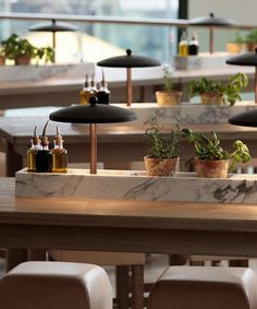 cute herbs and olive oil as center pieces. Vapiano vibe