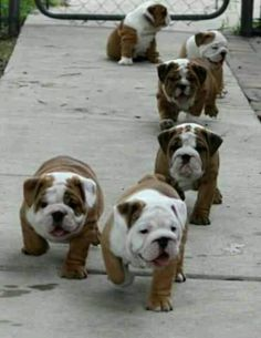 :-) I want one