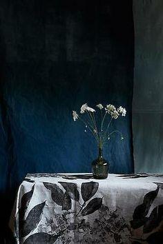 noperfectdayforbananafish:  eve wilson photography