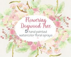 Watercolor sprays of Doogwood Tree flowers: wedding clip art; weddings; 5 sprays included; blush flowers; instant download by LollysLaneShoppe on Etsy