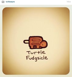 Turtle fudgesicle @turtlewayne Turtle Meme, Funny Turtle, Cartoon Turtle, Cute Turtle Drawings, Cute Animal Drawings, Easy Drawings, Cute Turtles, Baby Turtles, Kawaii Turtle