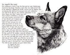 australian-cattle-dog-so-sayeth-limited-edition-print-34.jpg 757×595 pixels