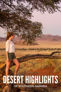 Desert highlights of southern Namibia #sossusvlei #travel #africa #NamibRand #Namib