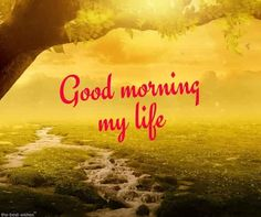 Romantic Good Morning Message For Husband [ Best Collection ] Good Morning My Life, Good Morning Husband, Good Morning Poems, Good Morning Wishes Friends, Romantic Good Morning Messages, Good Morning Angel, Morning Love Quotes, Good Morning Picture, Good Morning Greetings