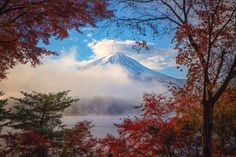 Mt.Fuji through the autumn window - It was very nice condition for taking pictures of Mt.Fuji.