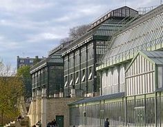 Jardin des plantes (Paris) l'alignement des serres