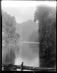 From Auckland Libraries: Showing the Wanganui River, a Maori canoe in the foreground Wanganui Region (N. Maori Art, Kiwiana, Photo Look, Auckland, Maui, New Zealand, Canoes, Libraries, River