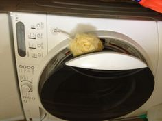 1000 Images About Laundry On Pinterest Laundry Rooms